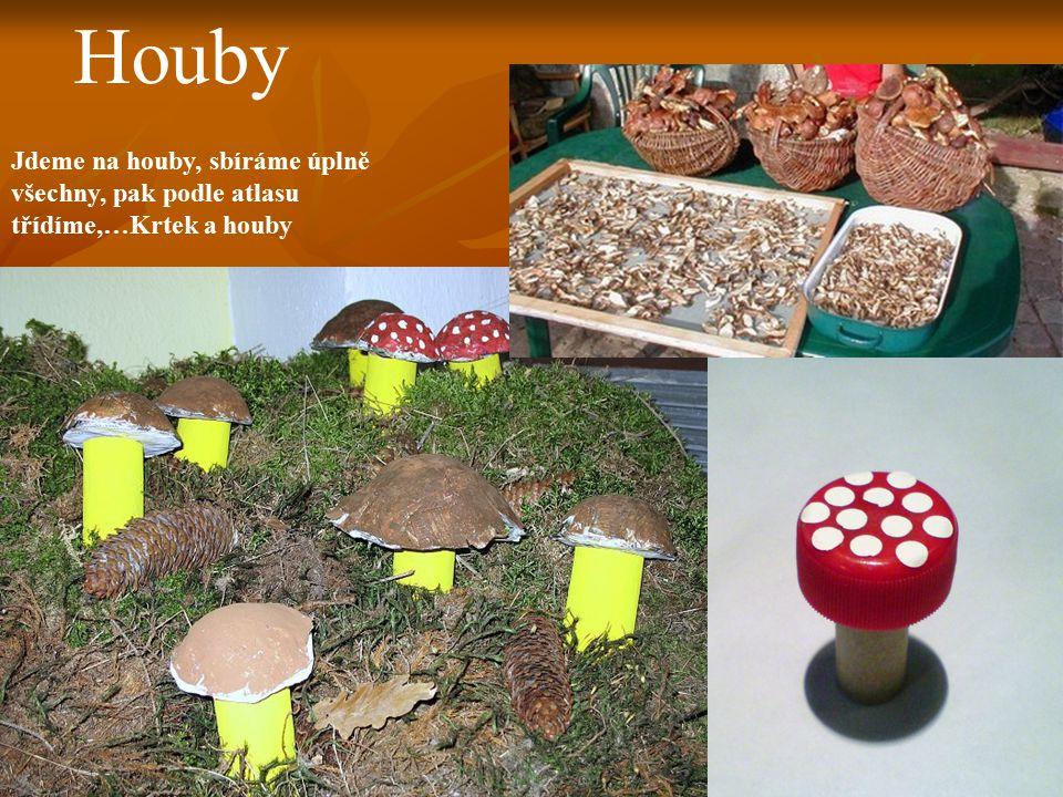 Houby Jdeme na houby, sbíráme úplně všechny, pak podle atlasu třídíme,…Krtek a houby