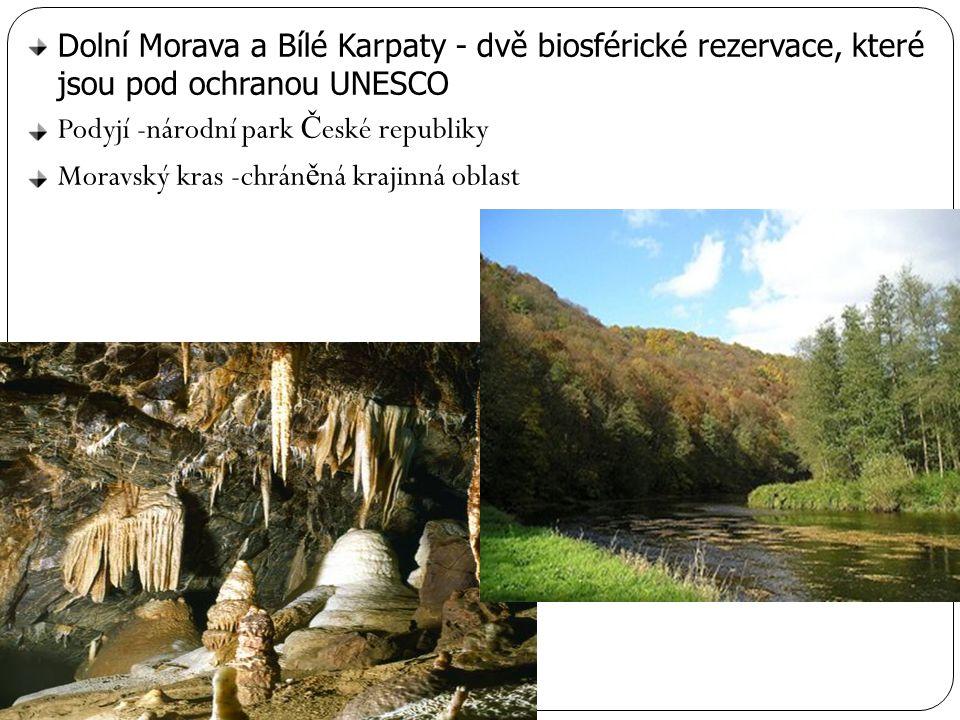 Dolní Morava a Bílé Karpaty - dvě biosférické rezervace, které jsou pod ochranou UNESCO Podyjí -národní park Č eské republiky Moravský kras -chrán ě n