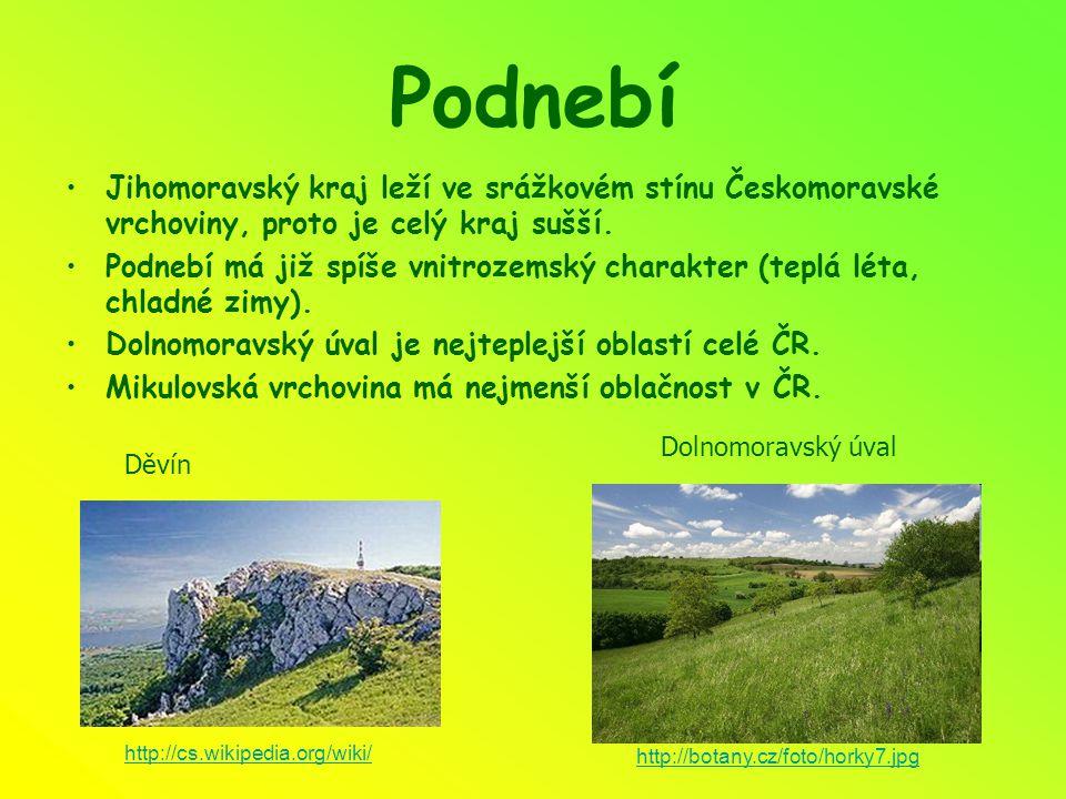 Podnebí Jihomoravský kraj leží ve srážkovém stínu Českomoravské vrchoviny, proto je celý kraj sušší. Podnebí má již spíše vnitrozemský charakter (tepl