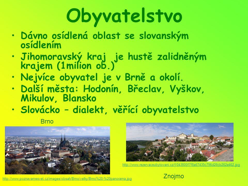 Obyvatelstvo Dávno osídlená oblast se slovanským osídlením Jihomoravský kraj je hustě zalidněným krajem (1milion ob.) Nejvíce obyvatel je v Brně a okolí.