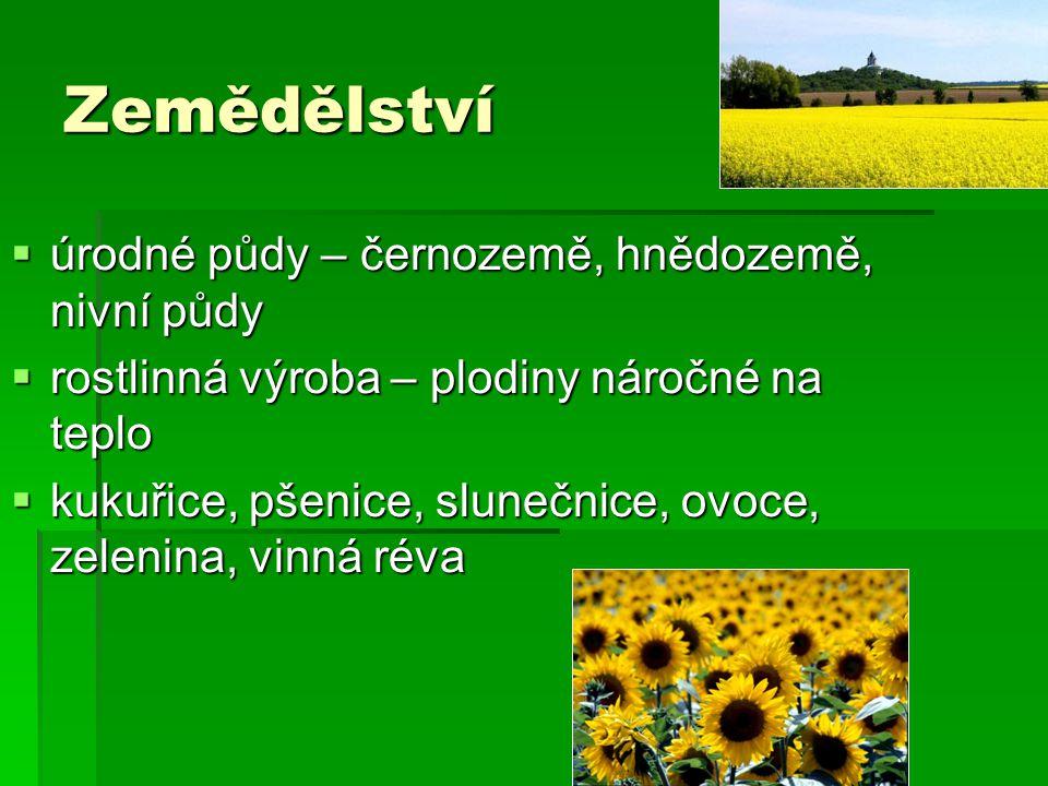 Zemědělství  úrodné půdy – černozemě, hnědozemě, nivní půdy  rostlinná výroba – plodiny náročné na teplo  kukuřice, pšenice, slunečnice, ovoce, zel