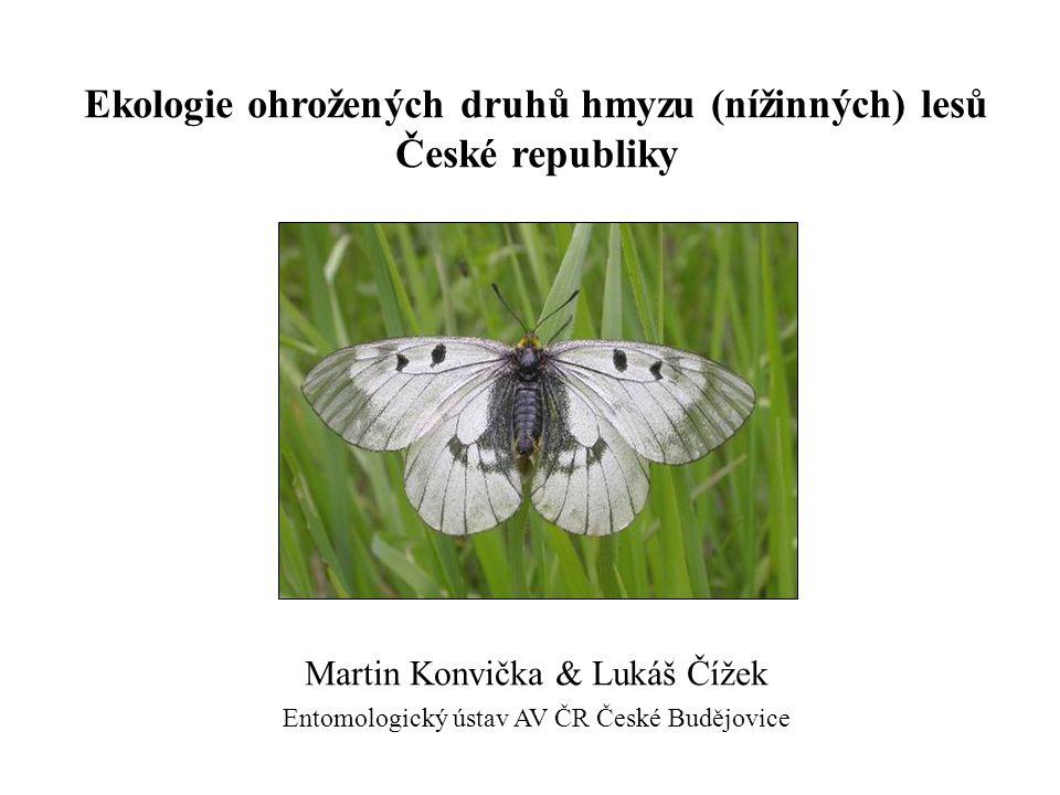 Ekologie ohrožených druhů hmyzu (nížinných) lesů České republiky Martin Konvička & Lukáš Čížek Entomologický ústav AV ČR České Budějovice
