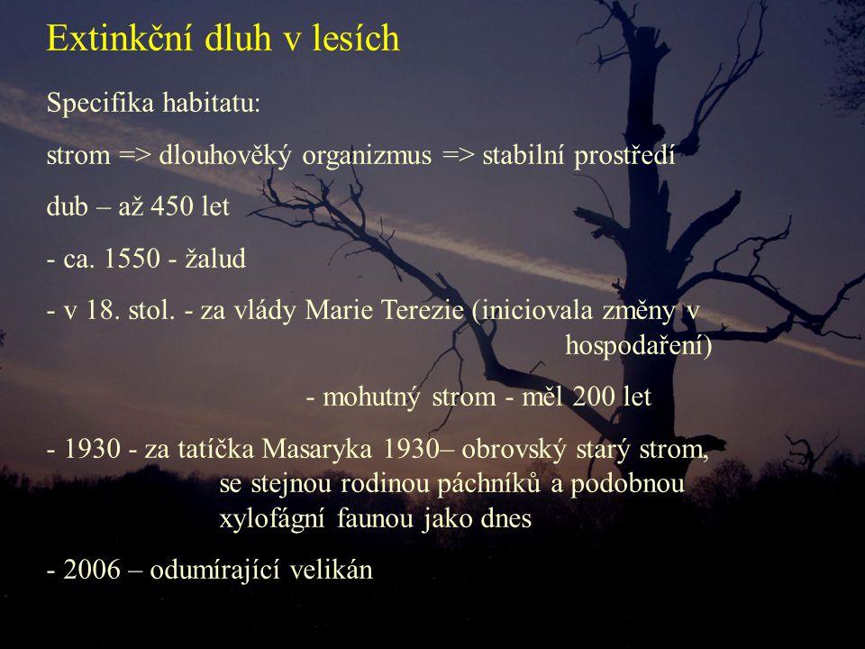 Specifika habitatu: strom => dlouhověký organizmus => stabilní prostředí dub – až 450 let - ca. 1550 - žalud - v 18. stol. - za vlády Marie Terezie (i