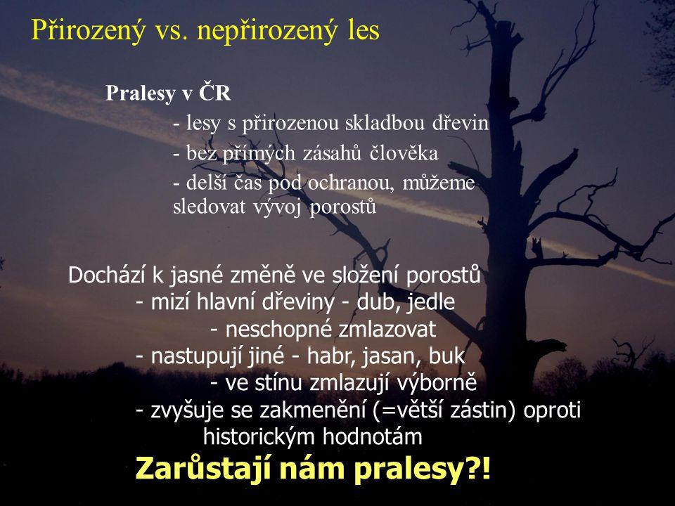 Pralesy v ČR - lesy s přirozenou skladbou dřevin - bez přímých zásahů člověka - delší čas pod ochranou, můžeme sledovat vývoj porostů Dochází k jasné změně ve složení porostů - mizí hlavní dřeviny - dub, jedle - neschopné zmlazovat - nastupují jiné - habr, jasan, buk - ve stínu zmlazují výborně - zvyšuje se zakmenění (=větší zástin) oproti historickým hodnotám Zarůstají nám pralesy?.