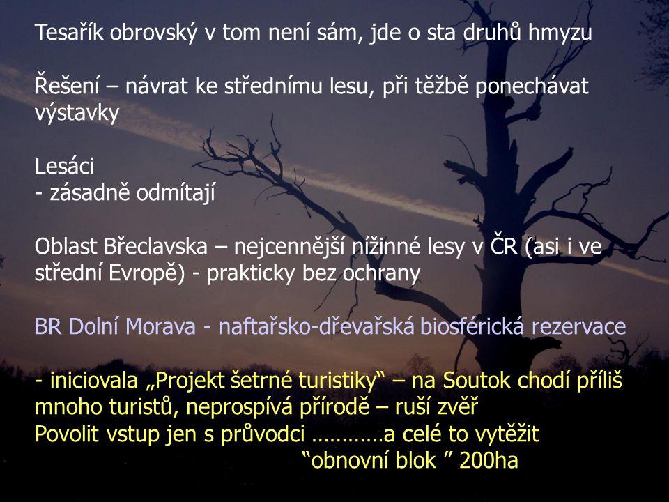 """Tesařík obrovský v tom není sám, jde o sta druhů hmyzu Řešení – návrat ke střednímu lesu, při těžbě ponechávat výstavky Lesáci - zásadně odmítají Oblast Břeclavska – nejcennější nížinné lesy v ČR (asi i ve střední Evropě) - prakticky bez ochrany BR Dolní Morava - naftařsko-dřevařská biosférická rezervace - iniciovala """"Projekt šetrné turistiky – na Soutok chodí příliš mnoho turistů, neprospívá přírodě – ruší zvěř Povolit vstup jen s průvodci …………a celé to vytěžit obnovní blok 200ha"""