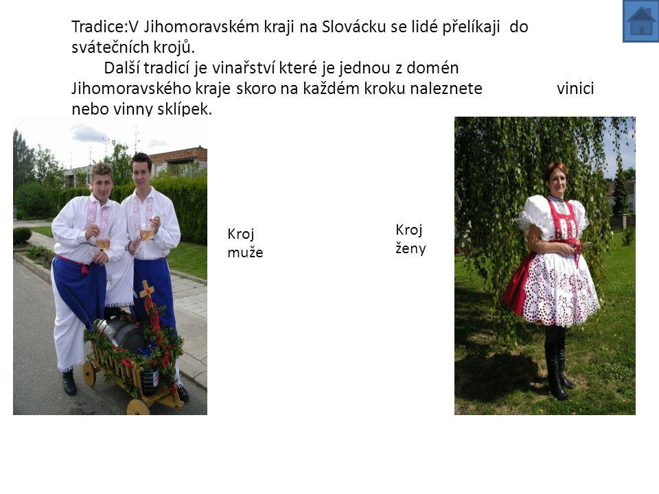 Jihomoravský kraj -je to čtvrtý největší kraj -rozloha 7065 km2 -kraj vinařství -Národní park Podyjí,Punkevní jeskyně -centrum kraje Brno -památky UNESCO:vila Tugendhata Lednicko-valtický areal,Lednice -počet obyvatel 1 135 586 (11% z ČR)