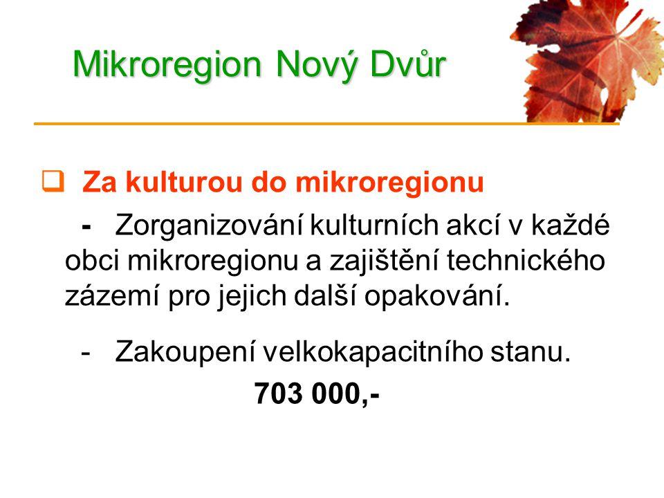 Mikroregion Nový Dvůr  Za kulturou do mikroregionu - Zorganizování kulturních akcí v každé obci mikroregionu a zajištění technického zázemí pro jejich další opakování.