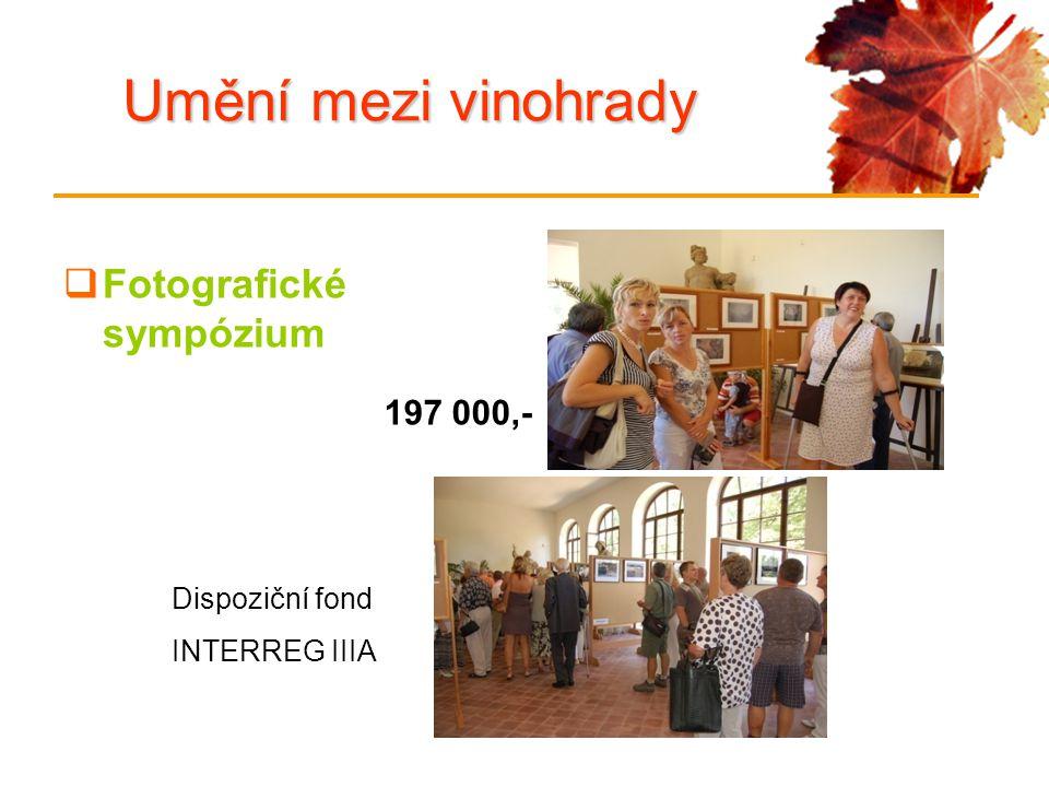 Umění mezi vinohrady  Fotografické sympózium Dispoziční fond INTERREG IIIA 197 000,-