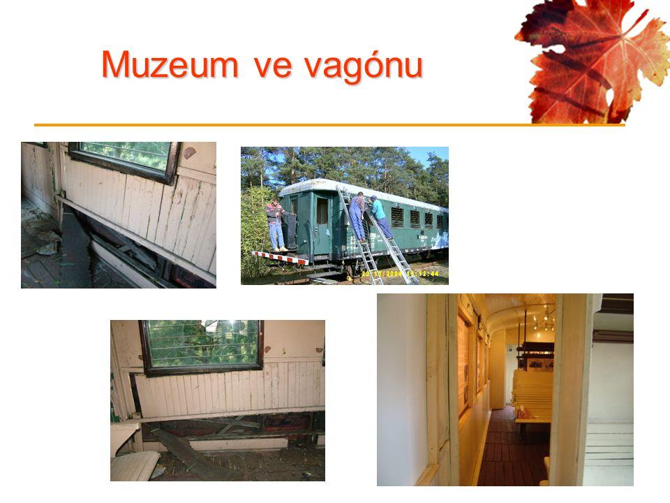 Muzeum ve vagónu