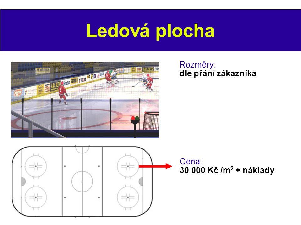 Ledová plocha Rozměry: dle přání zákazníka Cena: 30 000 Kč /m 2 + náklady