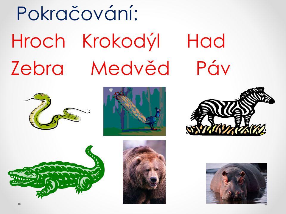 Správné odpovědi: Hroch Krokodýl Had Zebra Medvěd Páv