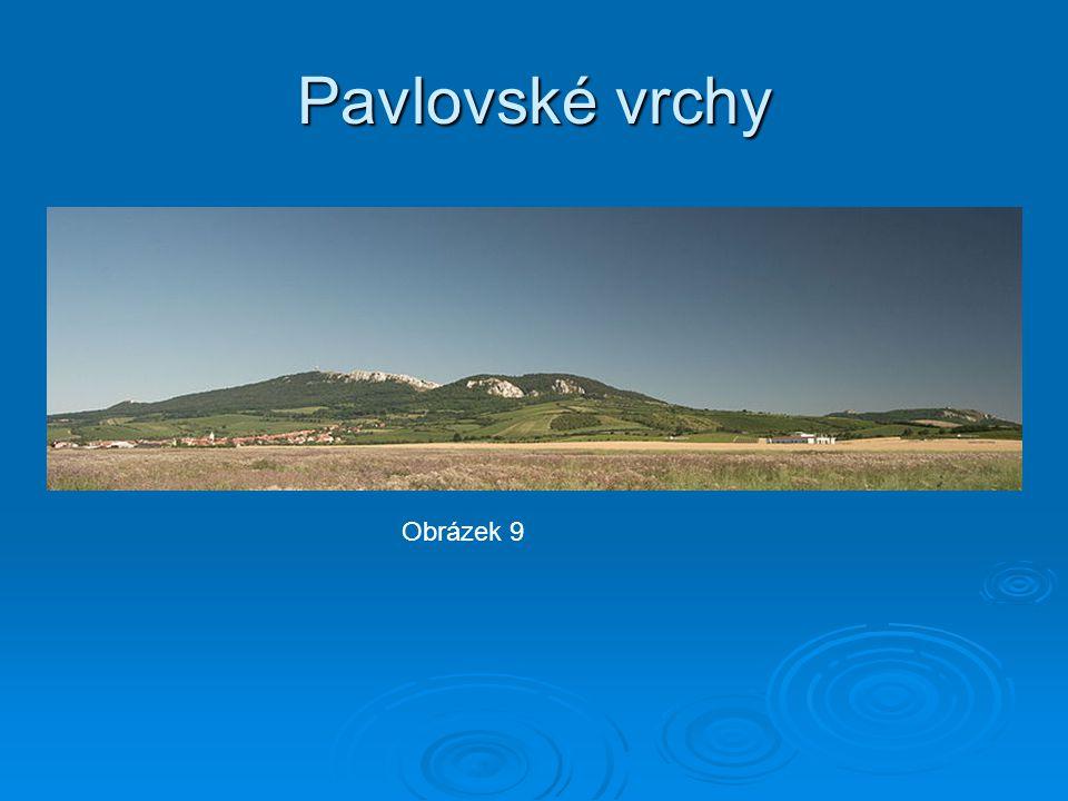 Pavlovské vrchy Obrázek 9