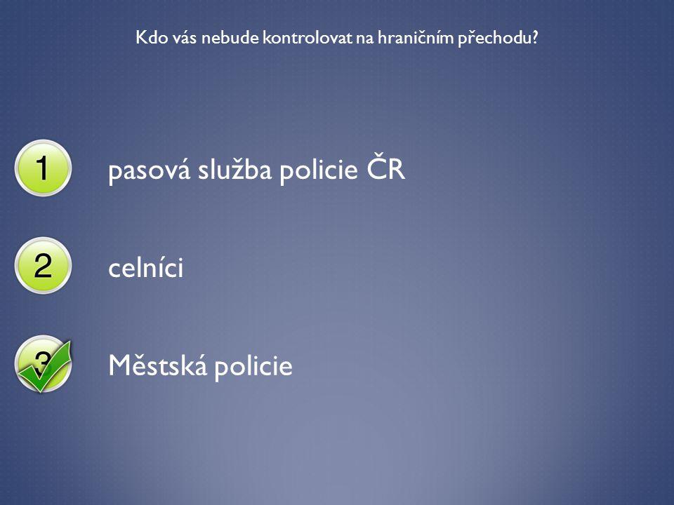 Kdo vás nebude kontrolovat na hraničním přechodu? pasová služba policie ČR celníci Městská policie