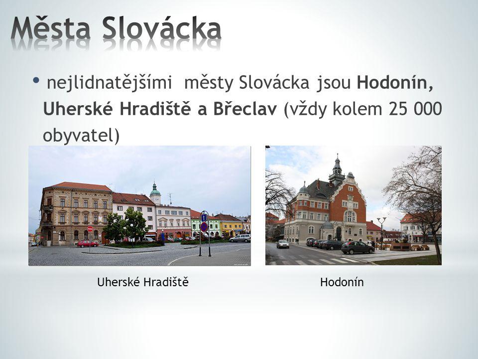k městům s více než 10 000 obyvatel patří Uherský Brod(17 tisíc), Kyjov (11,5 tisíc) a Veselí nad Moravou(taky 11,5 tisíc) mezi středně velká města regionu řadíme Staré Město, Kunovice, Napajedla, Strážnice, Mikulov, Dubňany, Hustopeče (vždy nad 5 000 obyvatel) mezi ta nejmenší města zase patří např.