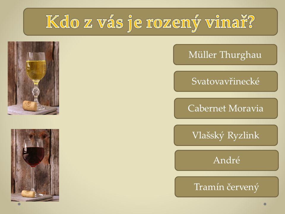 Vlašský Ryzlink Svatovavřinecké Cabernet Moravia Müller Thurghau André Tramín červený