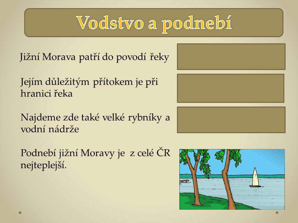 Dyje Nové Mlýny Moravy Jižní Morava patří do povodí řeky Jejím důležitým přítokem je při hranici řeka Najdeme zde také velké rybníky a vodní nádrže Podnebí jižní Moravy je z celé ČR nejteplejší.