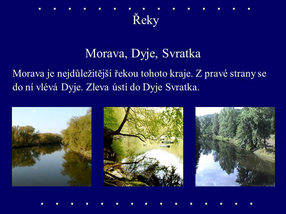 Nížiny Dolnomoravský úval, Dyjskosvratecký úval Úrodné nížiny podél dolního toku řeky Moravy a okolo řeky Dyje a jejího přítoku Svratky.