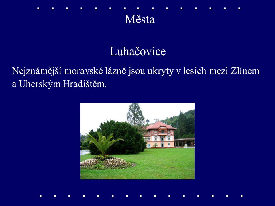 Města Uherské Hradiště, Hodonín Uherské Hradiště je největším městem Dolnomoravského úvalu. Hodonín je středisko Dolnomoravského úvalu.