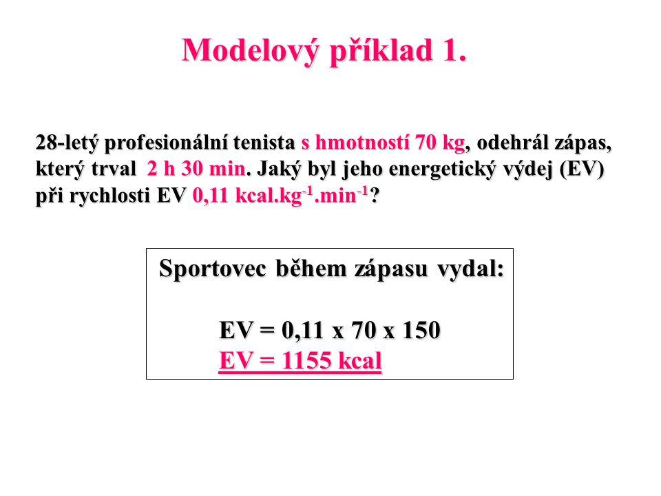 Modelový příklad 1.