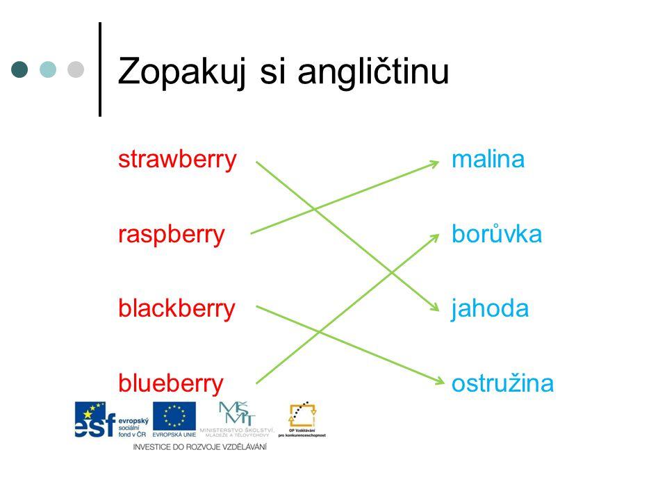 Zopakuj si angličtinu strawberrymalina raspberryborůvka blackberryjahoda blueberryostružina