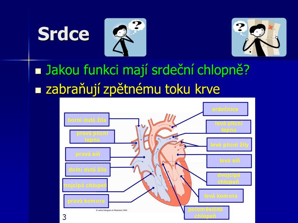 Srdce Jakou funkci mají srdeční chlopně? Jakou funkci mají srdeční chlopně? zabraňují zpětnému toku krve zabraňují zpětnému toku krve 3