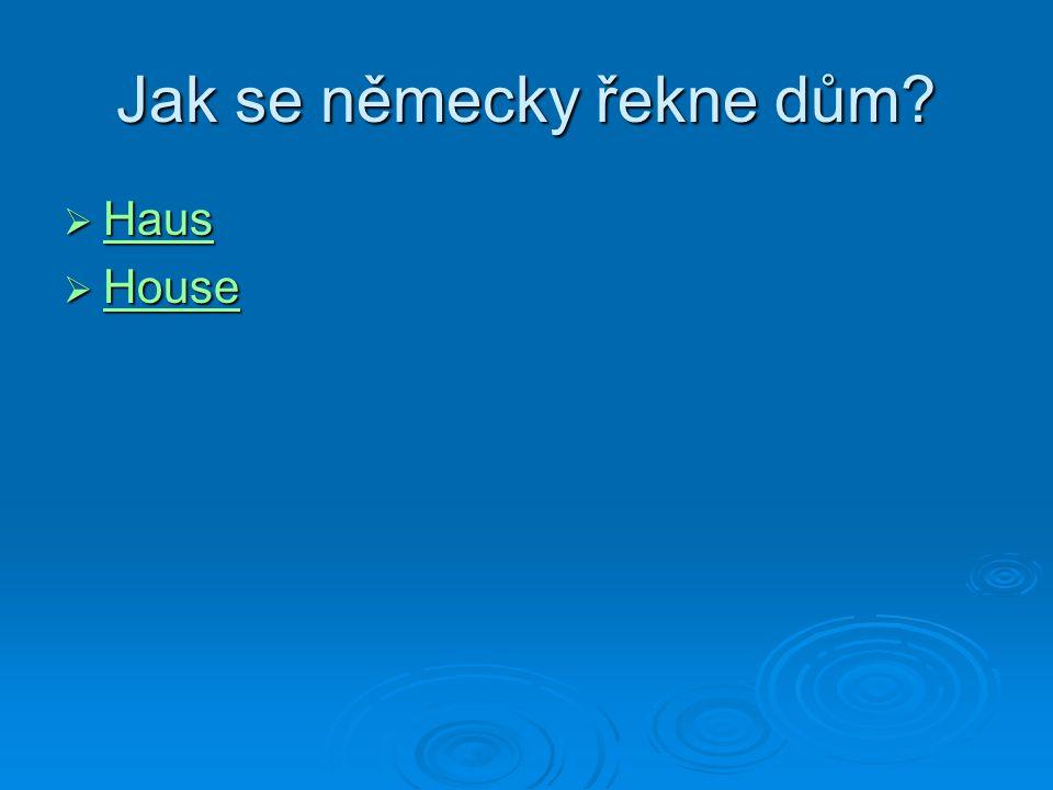 Jak se německy řekne dům  Haus Haus  House House