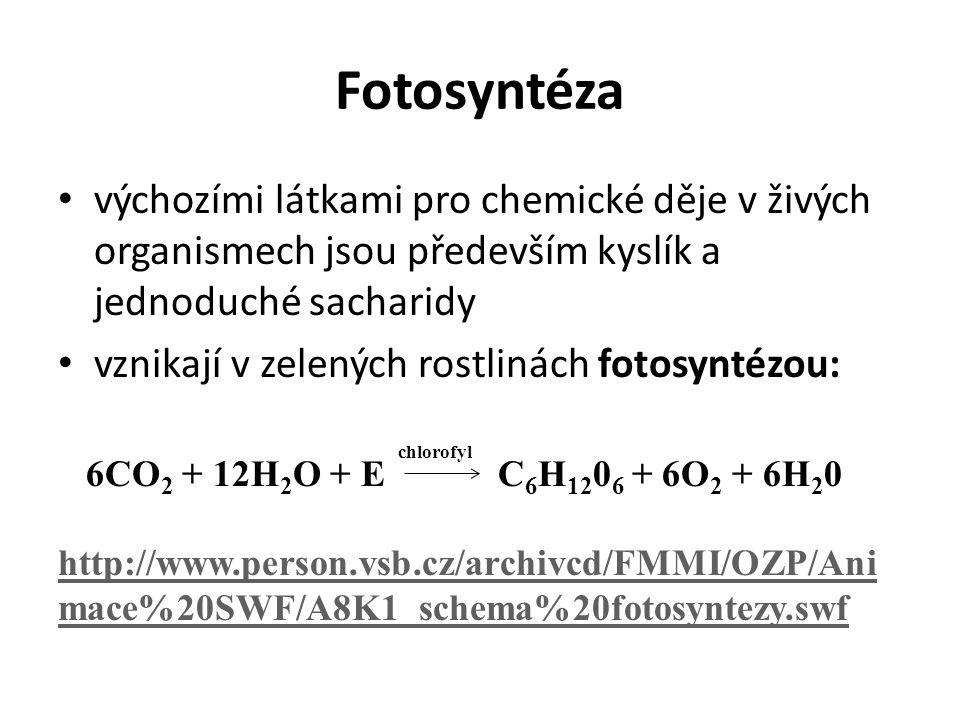 Fotosyntéza výchozími látkami pro chemické děje v živých organismech jsou především kyslík a jednoduché sacharidy vznikají v zelených rostlinách fotosyntézou: 6CO 2 + 12H 2 O + E C 6 H 12 0 6 + 6O 2 + 6H 2 0 http://www.person.vsb.cz/archivcd/FMMI/OZP/Ani mace%20SWF/A8K1_schema%20fotosyntezy.swf chlorofyl