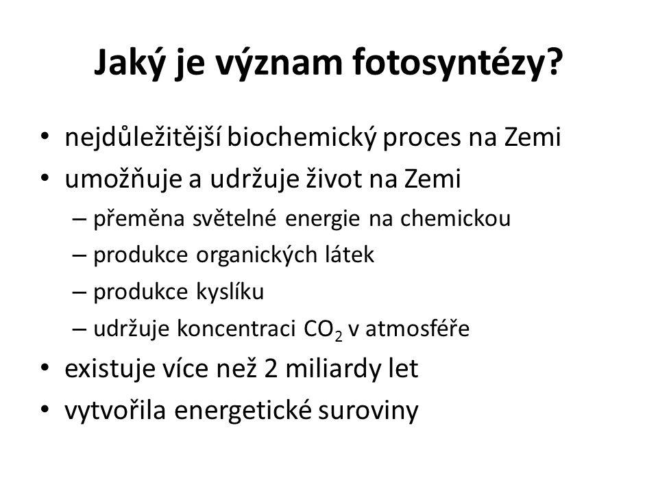 Jaký je význam fotosyntézy.