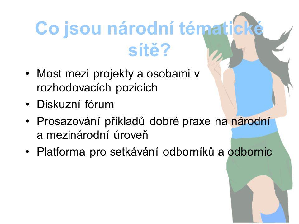 Co jsou národní tématické sítě? Most mezi projekty a osobami v rozhodovacích pozicích Diskuzní fórum Prosazování příkladů dobré praxe na národní a mez