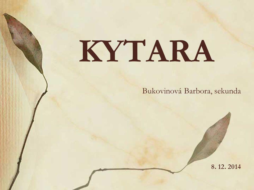 KYTARA Bukovinová Barbora, sekunda 8. 12. 2014