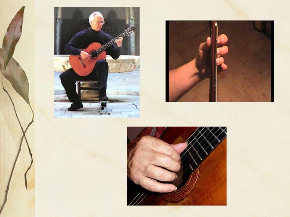 Dělení podle tvorby tónu: -akustické, elektroakustické, elektrické Podle materiálu: -masiv, polomasiv, překližka Podle hudebního stylu: -jazzová, flamenco...