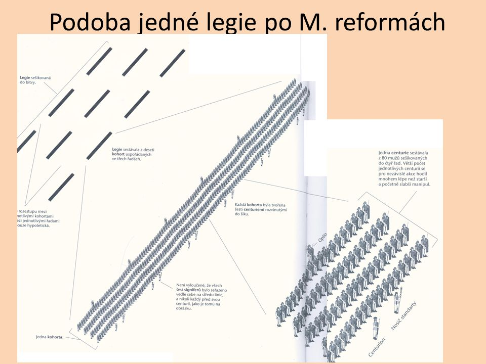 Podoba jedné legie po M. reformách
