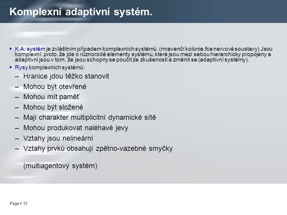 Page  13 Komplexní adaptivní systém.  K.A. systém je zvláštním případem komplexních systémů. (mravenčí kolonie,fce nervové soustavy).Jsou komplexní,