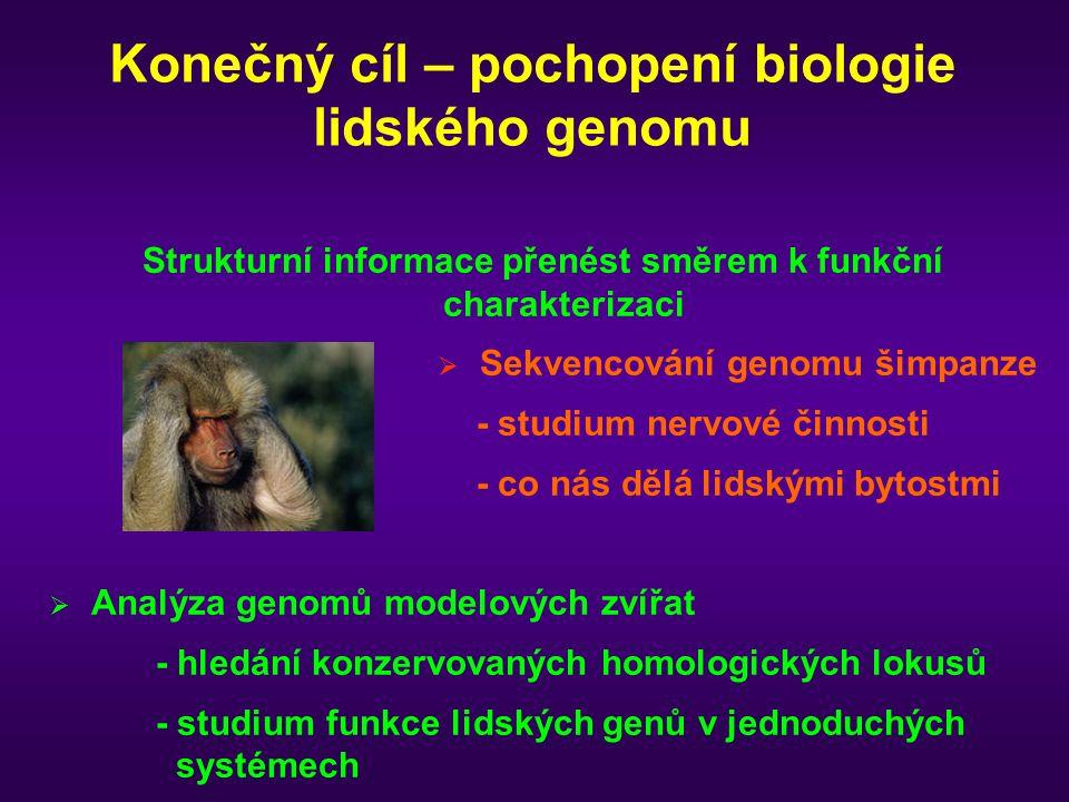 Konečný cíl – pochopení biologie lidského genomu Strukturní informace přenést směrem k funkční charakterizaci  Sekvencování genomu šimpanze - studium