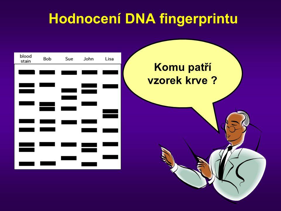 Hodnocení DNA fingerprintu Komu patří vzorek krve ?