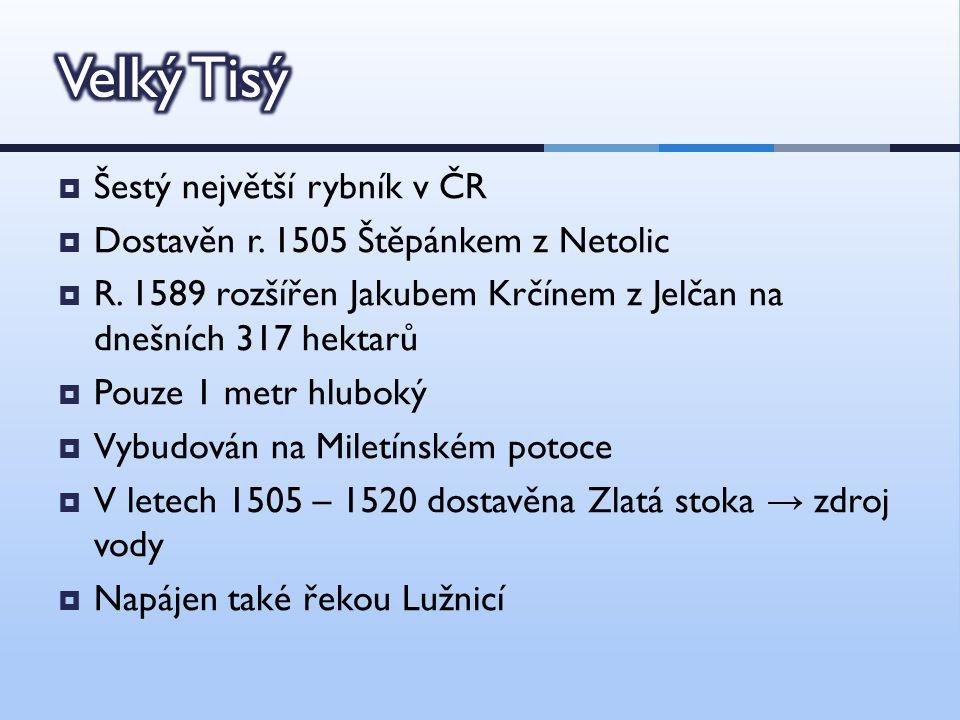  Šestý největší rybník v ČR  Dostavěn r. 1505 Štěpánkem z Netolic  R.