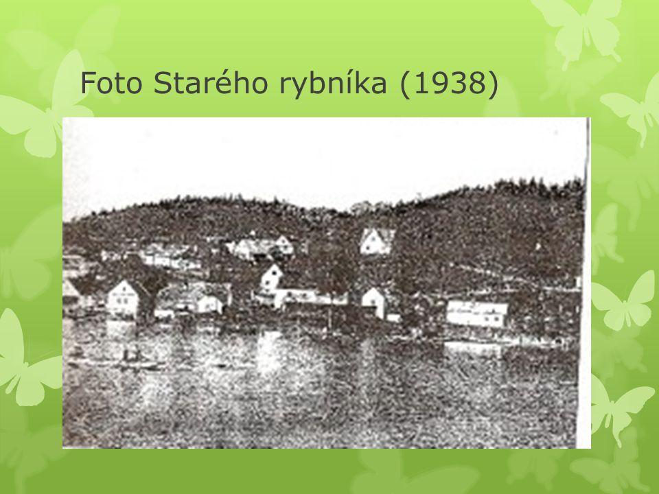 Foto Starého rybníka (1938)