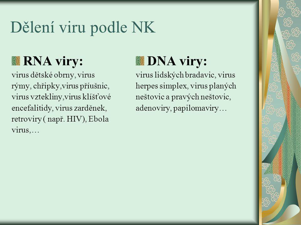 Dělení viru podle NK RNA viry: virus dětské obrny, virus rýmy, chřipky,virus příušnic, virus vztekliny,virus klíšťové encefalitidy, virus zarděnek, re