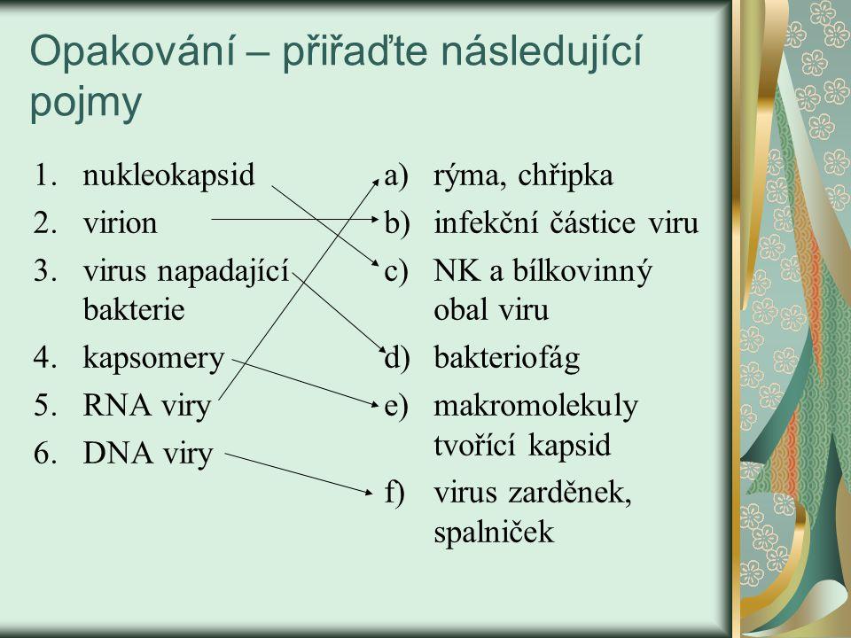 Opakování – přiřaďte následující pojmy 1.nukleokapsid 2.virion 3.virus napadající bakterie 4.kapsomery 5.RNA viry 6.DNA viry a)rýma, chřipka b)infekčn