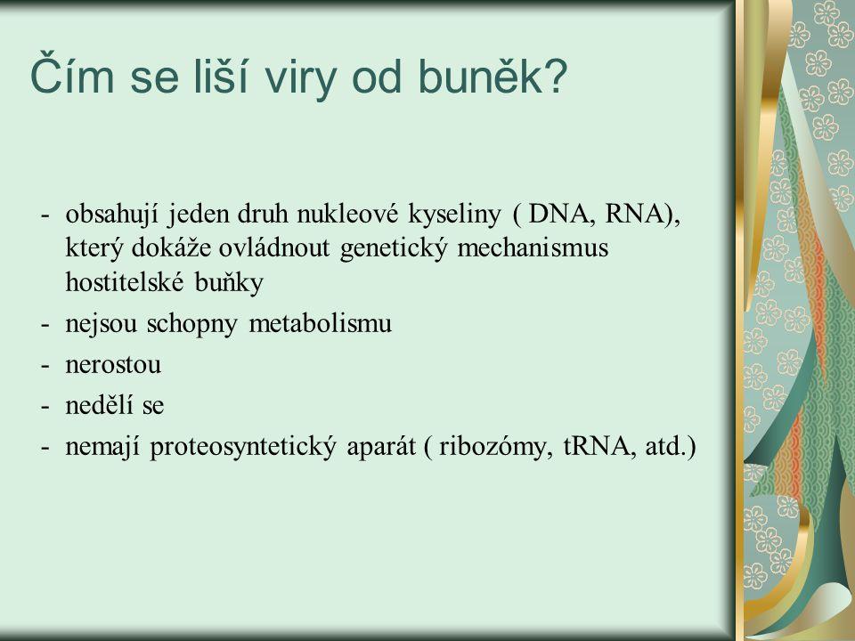 Čím se liší viry od buněk? - obsahují jeden druh nukleové kyseliny ( DNA, RNA), který dokáže ovládnout genetický mechanismus hostitelské buňky -nejsou