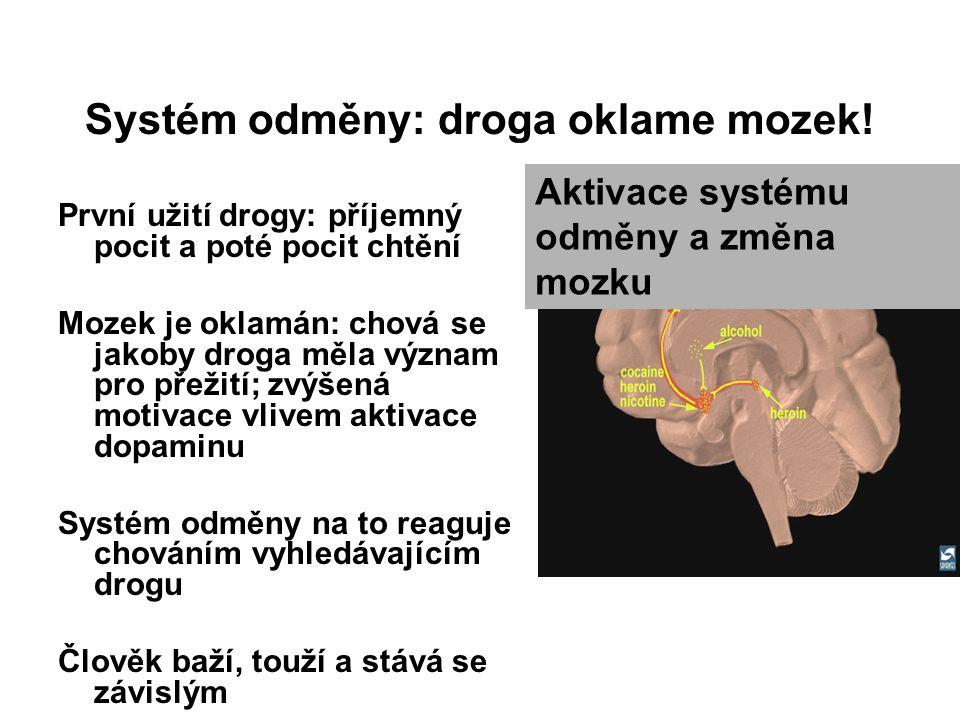 Systém odměny: droga oklame mozek! První užití drogy: příjemný pocit a poté pocit chtění Mozek je oklamán: chová se jakoby droga měla význam pro přeži
