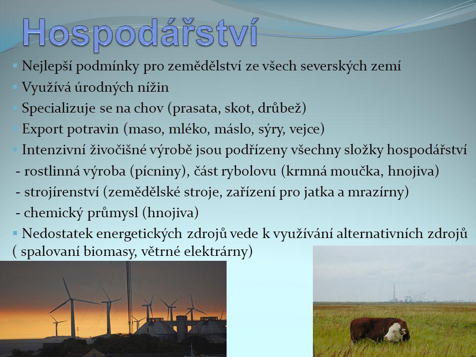 Nejlepší podmínky pro zemědělství ze všech severských zemí  Využívá úrodných nížin  Specializuje se na chov (prasata, skot, drůbež)  Export potra