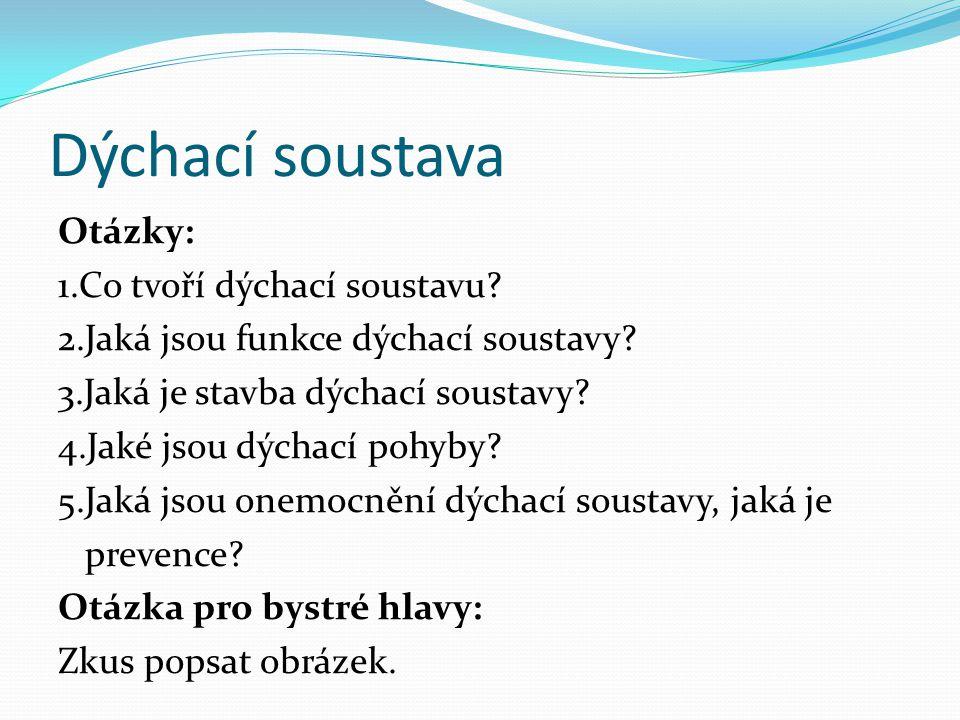 Dýchací soustava Otázky: 1.Co tvoří dýchací soustavu.