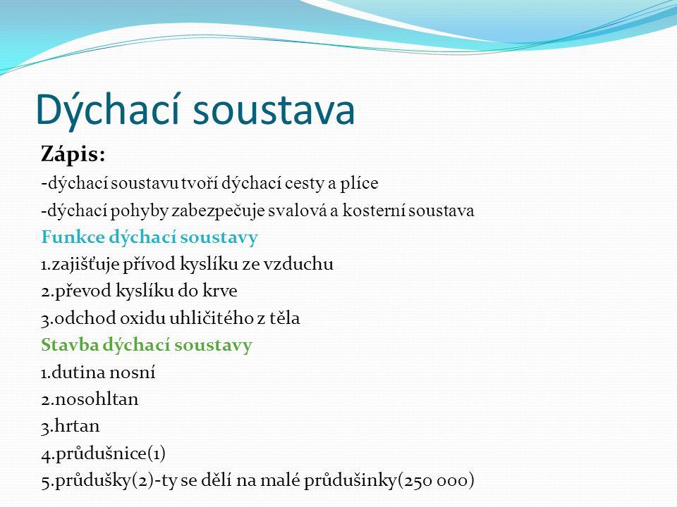 Dýchací soustava Zápis: - dýchací soustavu tvoří dýchací cesty a plíce -dýchací pohyby zabezpečuje svalová a kosterní soustava Funkce dýchací soustavy 1.zajišťuje přívod kyslíku ze vzduchu 2.převod kyslíku do krve 3.odchod oxidu uhličitého z těla Stavba dýchací soustavy 1.dutina nosní 2.nosohltan 3.hrtan 4.průdušnice(1) 5.průdušky(2)-ty se dělí na malé průdušinky(250 000)