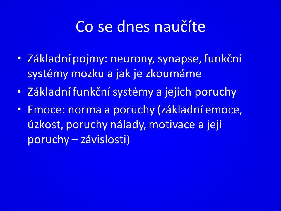 Co se dnes naučíte Základní pojmy: neurony, synapse, funkční systémy mozku a jak je zkoumáme Základní funkční systémy a jejich poruchy Emoce: norma a