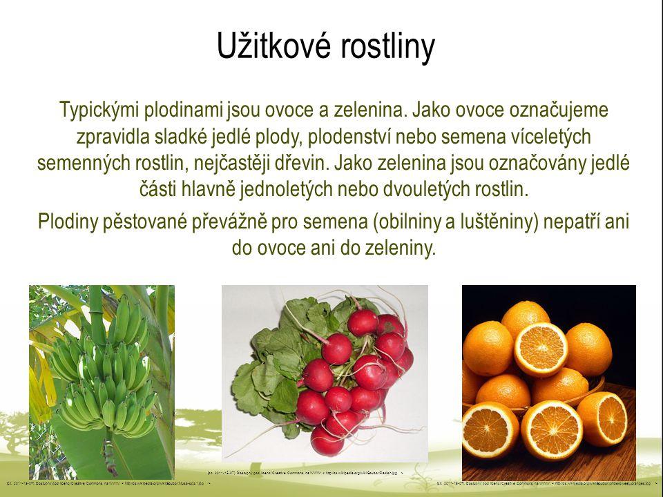 Užitkové rostliny Typickými plodinami jsou ovoce a zelenina. Jako ovoce označujeme zpravidla sladké jedlé plody, plodenství nebo semena víceletých sem
