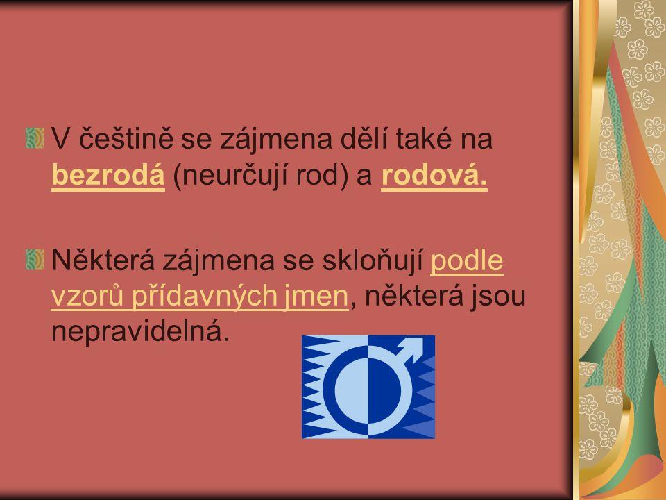 V češtině se zájmena dělí také na bezrodá (neurčují rod) a rodová. Některá zájmena se skloňují podle vzorů přídavných jmen, některá jsou nepravidelná.