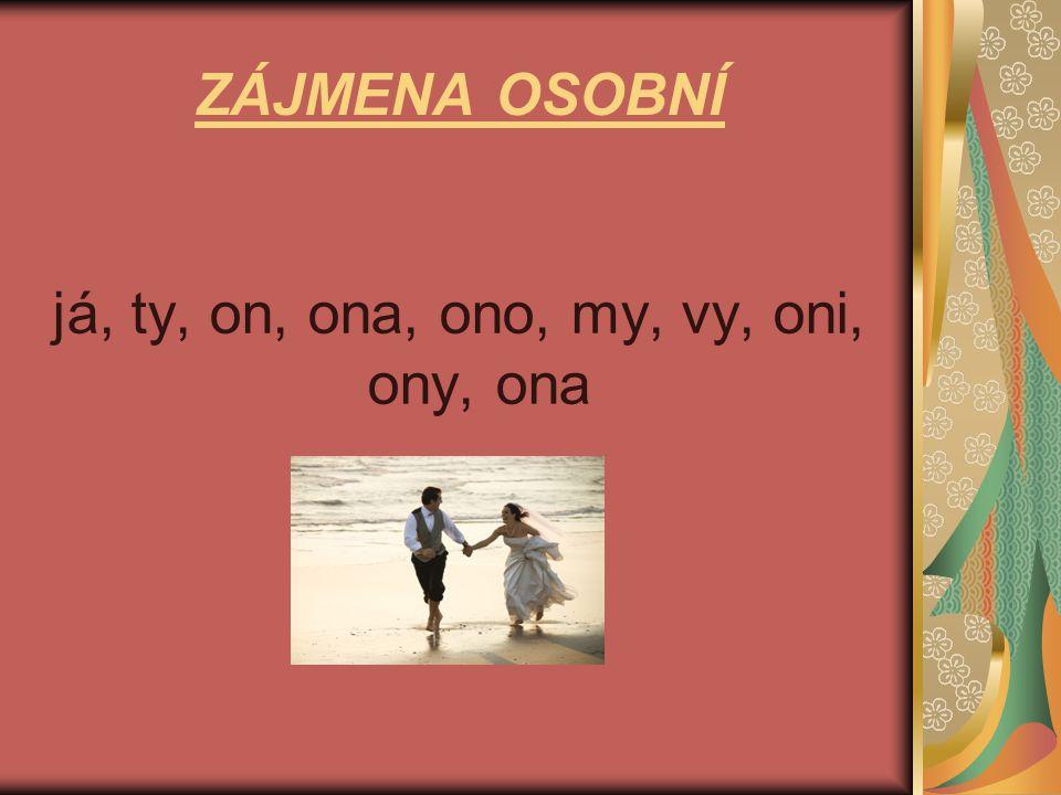 ZÁJMENA PŘIVLASTŇOVACÍ můj, tvůj, jeho, její, náš, váš, jejich, svůj