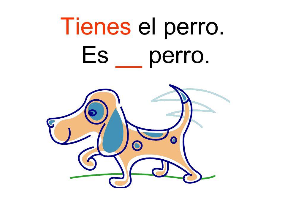 Tienes el perro. Es __ perro.