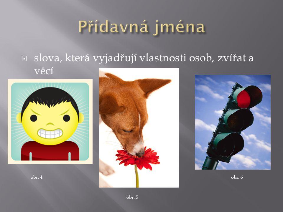  slova, která vyjadřují vlastnosti osob, zvířat a věcí obr. 4 obr. 5 obr. 6